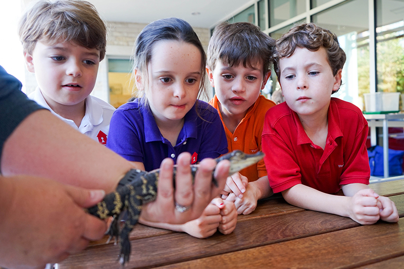 Young students look in awe at baby alligator
